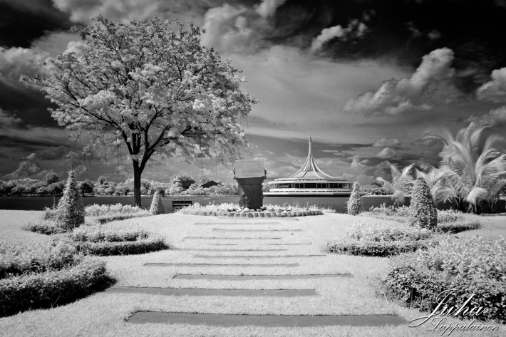 another infrared view at the park
