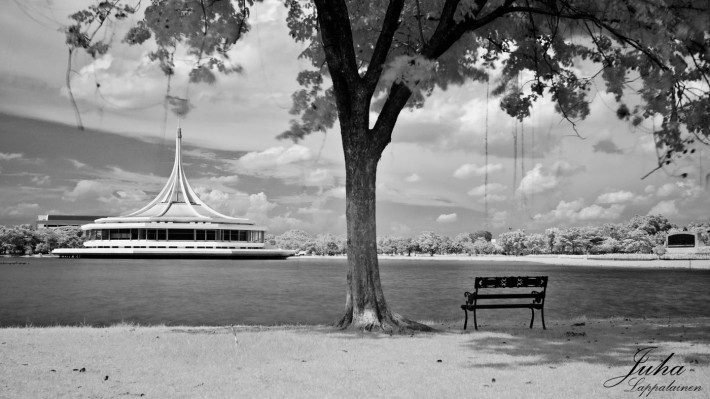 a vacant seat at the park