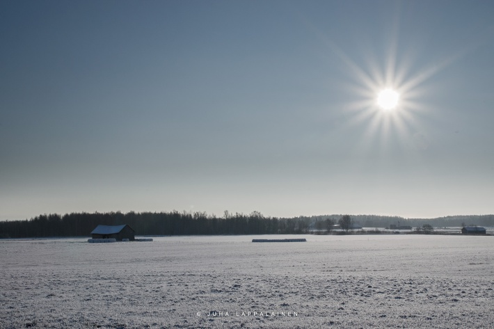 The Cold Sun